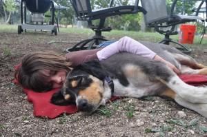 dog-hug