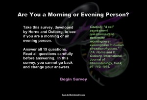 morning-or-evening-person
